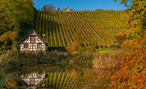 Фото Осень Швейцария Дома Пруд Холм Кустов Thurgau