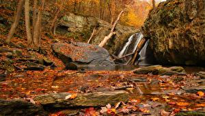 Фотографии Осень Водопады Камень Листья Скала Природа
