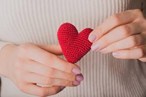 Фотографии Крупным планом День святого Валентина Рука Сердечко