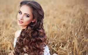 Картинка Кудрявые Размытый фон Шатенка Смотрят Прически Волосы Красивые молодая женщина