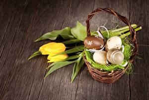 Обои для рабочего стола Пасха Тюльпан Корзины Цветы
