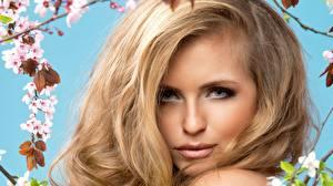 Фотография Лицо Блондинка Смотрят Волос Русых молодые женщины