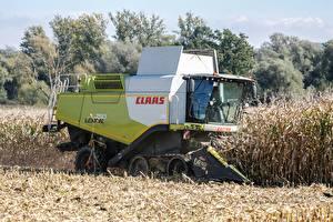 Обои Поля Кукуруза Зерноуборочный комбайн Работа Claas lexion 760 Природа картинки