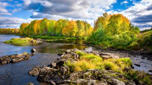 Фото Финляндия Осень Река Камень Деревья Природа
