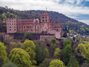 Фотография Германия Замок Леса Heidelberg castle, Baden-Württemberg