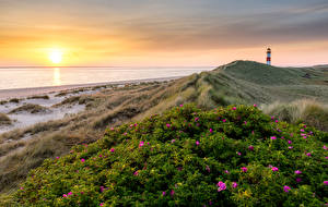 Фотографии Германия Берег Маяки Рассвет и закат Пейзаж Солнце Ellenbogen Природа
