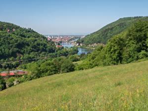 Фотографии Германия Речка Лес Луга Холмы Траве Heidelberg, Neckar River, Baden-Württemberg Природа