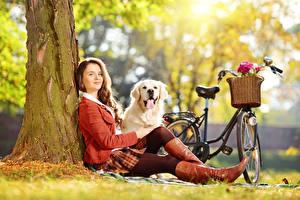 Обои для рабочего стола Золотистый ретривер Собаки Боке Трава Велосипеде Шатенка Сидя Ноги Сапог девушка