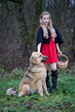 Фото Блондинка Позирует Платья Сапогов Корзины Смотрят Красная Шапочка Jessica молодая женщина