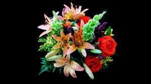 Обои для рабочего стола Лилии Роза Букеты На черном фоне Цветы