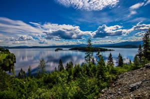 Фотографии Норвегия Пейзаж Небо Облачно Деревьев Geiranger, fjord
