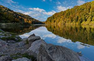 Обои Реки Камень Осенние Лес Швейцария Rhine Природа