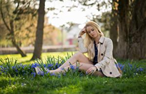 Фотографии Блондинок Сидящие Траве Ног Пиджак Размытый фон Sarah девушка