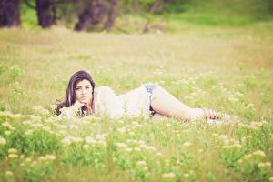 Фотография Лето Трава Лежачие девушка