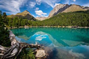 Фото Швейцария Горы Озеро Альпы Облачно Отражение Lagh da Saoseo Природа