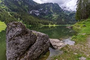 Обои Швейцария Камни Гора Озеро Лес Альпы St. Gallen, lake Voralpsee Природа