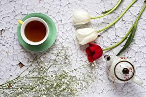 Обои для рабочего стола Чай Тюльпан Чайник Чашка Сверху Пища Цветы