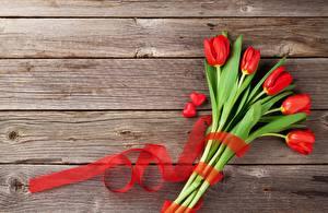 Обои для рабочего стола Тюльпан Сердечко Доски Лента Шаблон поздравительной открытки цветок