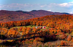 Картинка Штаты Осенние Леса Холм South Woodstock Vermont Природа