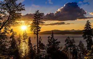 Фото США Рассветы и закаты Озеро Калифорнии Деревья Солнце lake Tahoe Природа