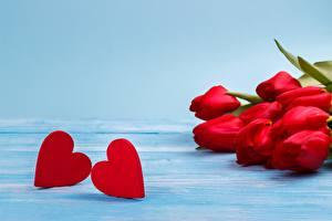 Фотографии День всех влюблённых Серце Шаблон поздравительной открытки Цветы