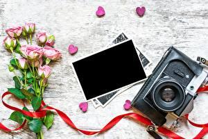 Картинки День всех влюблённых Роза Шаблон поздравительной открытки Фотоаппарат Сердце цветок