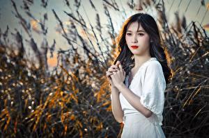 Фотографии Азиаты Боке Брюнетки Руки Смотрят молодые женщины