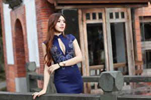 Фото Азиаты Шатенки Платье Руки Взгляд Боке Девушки