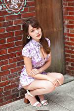 Обои Азиатки Шатенки Сидит Платья Вырез на платье Смотрят Красивый девушка