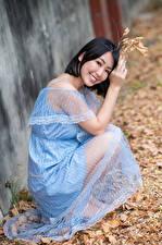 Фотографии Азиатки Брюнетка Платье Улыбка Сидит Листья Боке Смотрит молодая женщина