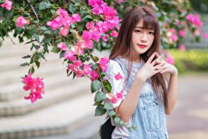 Фотографии Азиатки Цветущие деревья Руки Взгляд Боке молодые женщины