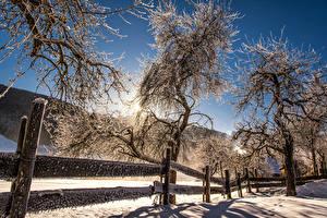 Обои Австрия Зима Снег Деревьев Забор Солнце Mittertal Природа