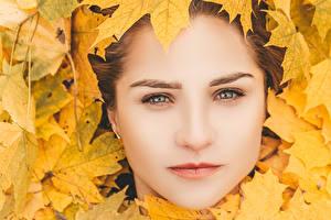 Фото Осенние Лицо Листья молодая женщина