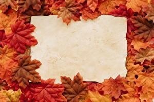 Фото Осень Шаблон поздравительной открытки Клён Листва