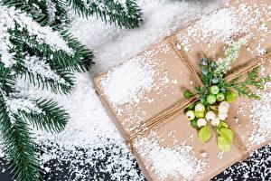 Фотография Новый год Ягоды Подарков На ветке Снега