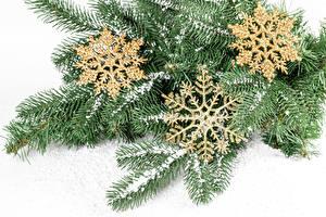 Фотографии Рождество Белом фоне На ветке Снегу Снежинка