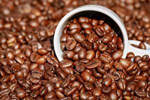 Фотографии Кофе Много Зерна Чашке Еда
