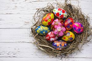 Фотографии Пасха Яйца Гнезда