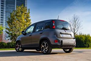 Фотография Fiat Серый Гибридный автомобиль Panda Sport Hybrid, (319), 2020 автомобиль