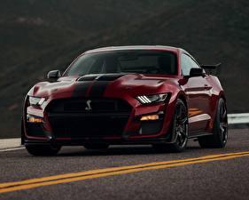 Фотография Ford Бордовый Спереди Mustang Shelby GT500 2019 Автомобили