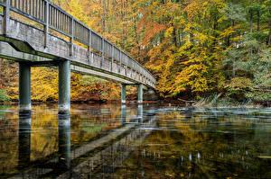 Фотографии Германия Осень Реки Мосты Schwentine Природа