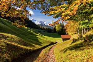 Картинка Германия Горы Осенние Бавария Альпы Деревьев Upper Bavaria Природа