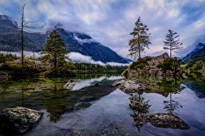 Обои Германия Гора Озеро Камни Скала Дерева Hintersee Природа