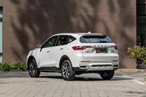 Обои Haval Кроссовер Белый Металлик Китайские F7, 2020 Автомобили