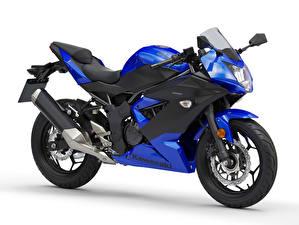 Обои Kawasaki Синие Белом фоне Ninja 125, EU-spec, 2018 --