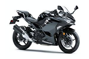 Фотографии Кавасаки Черный Белым фоном Ninja 400, 2017- - Мотоциклы