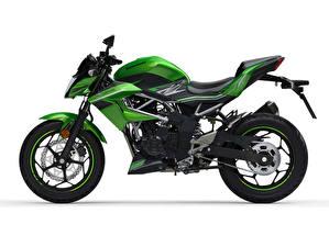 Обои Kawasaki Зеленых Сбоку Z125, EU-spec, 2018 -- Мотоциклы
