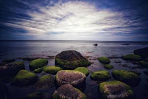 Картинка Океан Вечер Камень Мха