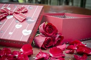 Картинки Розы Коробке Бант Красный Лепестков цветок