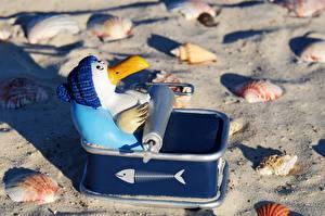 Обои Ракушки Игрушки Пингвины Креатив Пляж Песок В шапке Забавные